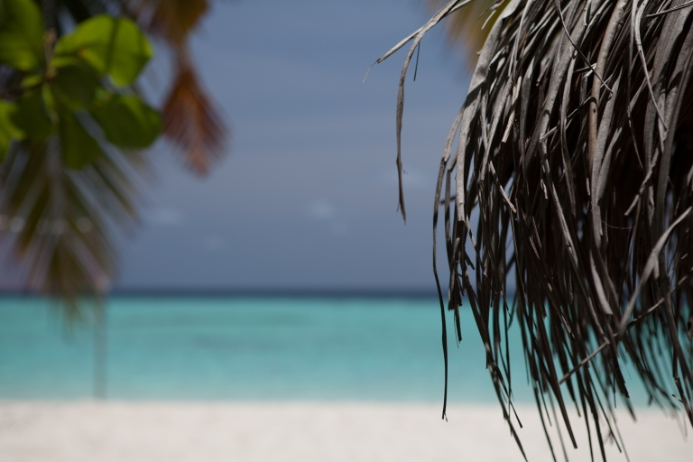 Maldives Beach II